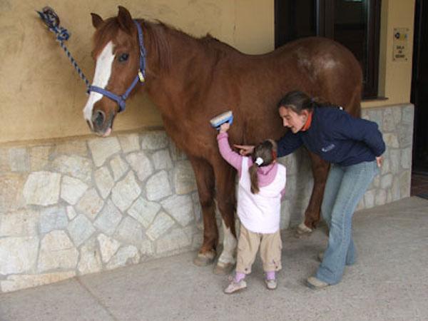 curso_verano_equitacion